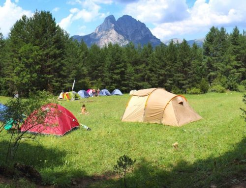 Vols tornar a viure els campaments com quan eres infant?