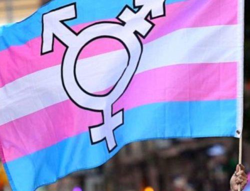 Posicionament 31M: Dia de la Visibilitat Trans*