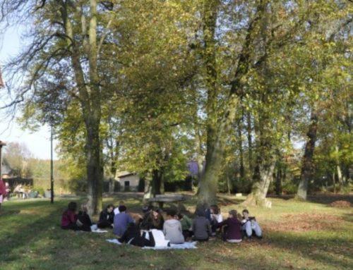 "Training internacional a Alemanya: ""Education for social change"""